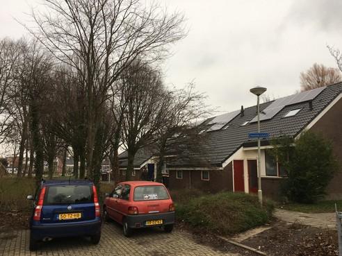 Uitslag West-Friese stelling: Boom belangrijker dan zonnepaneel