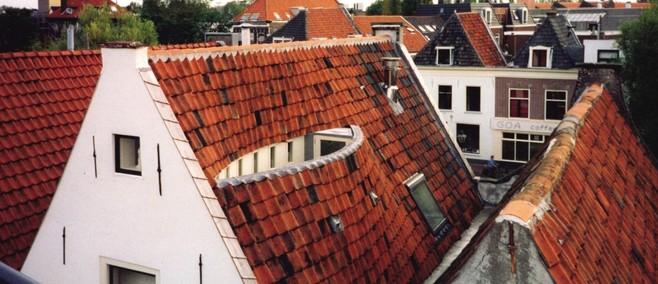 Daken hebben de toekomst: Leiden wil meer doen met onbenutte ruimte