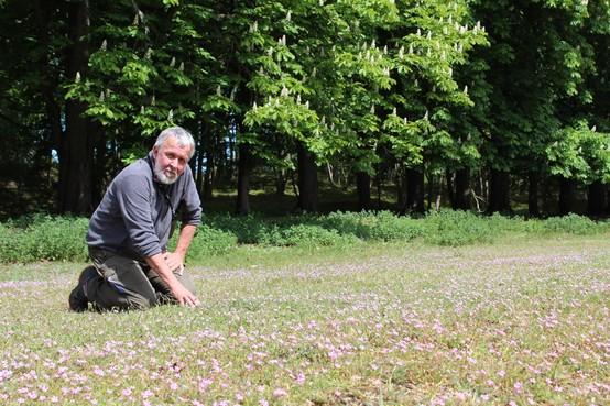 Boswachter Ruud Luntz (Nationaal Park Zuid-Kennemerland) gaat met pensioen: 'De natuur helpen, dat moeten we samen doen'