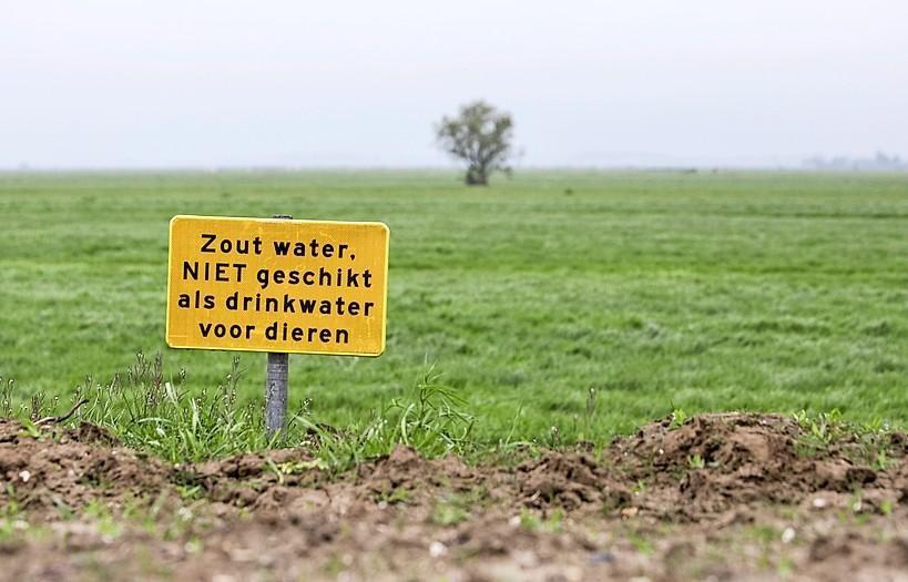 Onderzoek sanering Westdijk Spakenburg afgerond, miljoenenschoonmaak begint na maart 2020 - Noordhollands Dagblad