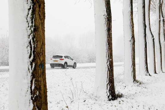 Redactie zoekt leukste sneeuwfoto's Zaanstreek en Waterland