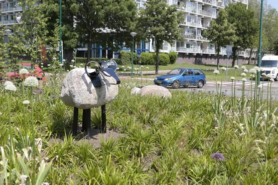 Rotondeschapen houden verkeer op doorgaande route in Soest in de gaten