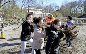 De leerlingen Norah ten Hoeve,  Jamilla Asalobi en Lieke van Es van De Vlieberg sjouwen met een jong boompje.