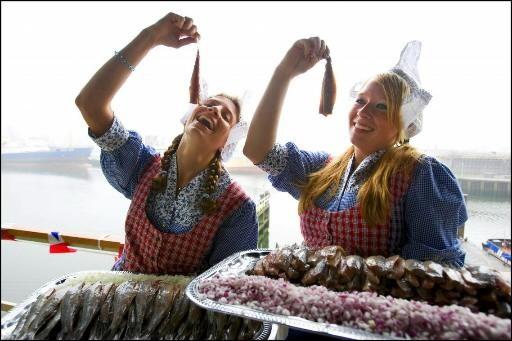 Beste haring uit Noord-Holland in Alkmaar
