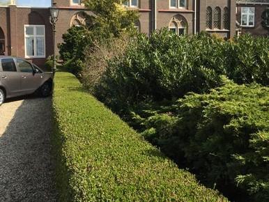 Groenendijk tegen komst kerkvilla's