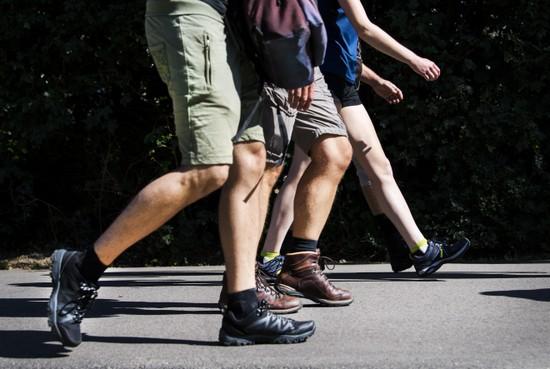 Onderzoek naar grote wandeltocht in Duin- en Bollenstreek
