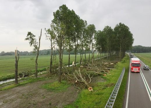 De bomen die sneuvelden door de 'tornado' in 't Veld en Niedorp deze maand, worden die herplant? Nou, niet per se
