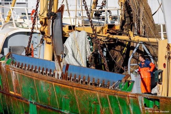 Verbod op pulsvissen in wet gegoten