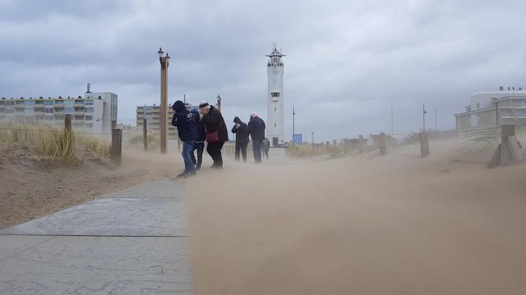 LIVEBLOG: Januari-storm raast over Leidse regio