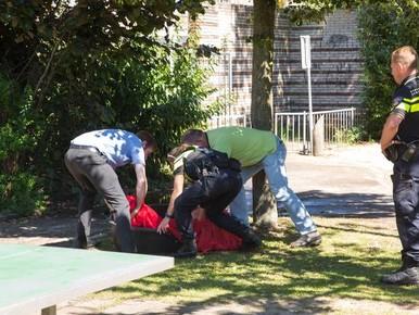 Pitbull Bussum doodde al eerder kat