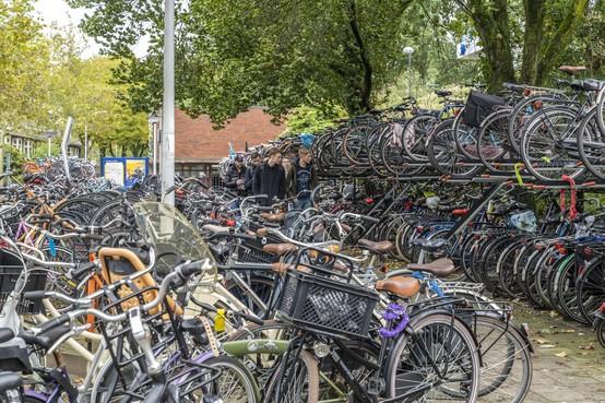Nieuwe, brede, rode paden; het jaar van de fiets breekt aan in Leiden
