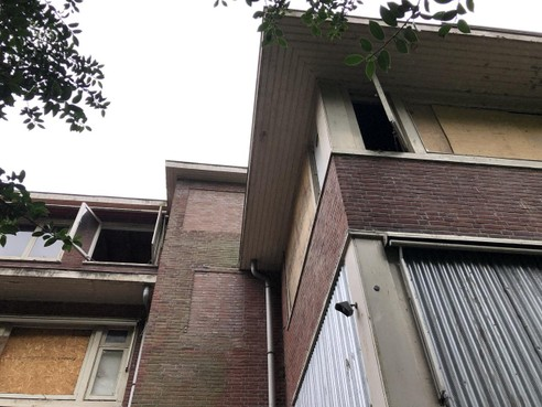 Actiegroep Red de Hout wil dat milieudienst renovatie Huize Westerlicht blokkeert ter bescherming van vleermuizen daar