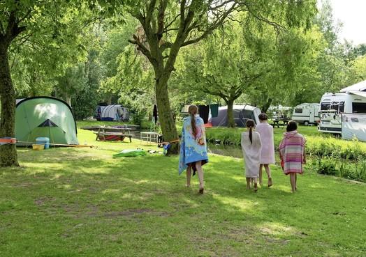 Camping het Rietveen: een verborgen schat in Landsmeer