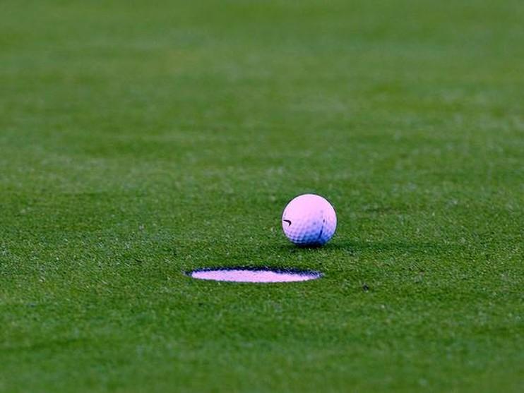 Tweetal steelt 175 golfballen bij Golfbaan Westwoud