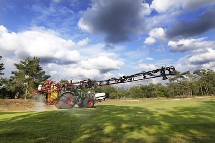 Aaltjes gaan de strijd aan met engerlingen op de fairways van de Hilversumsche Golf Club